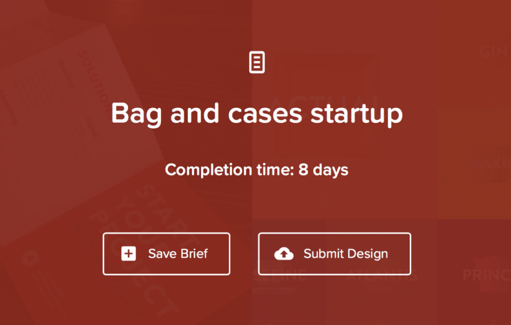 Bags and cases startup brief